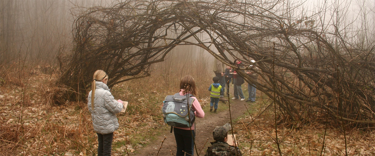 Outdoor Studios Kent and the South East - Forest Visit Information