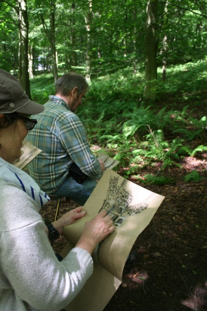 Bespoke. Adult walking and drawing days, summer, King's Wood.