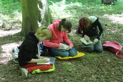 Drawing in Kings Wood