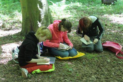 Drawing in Kings Wood