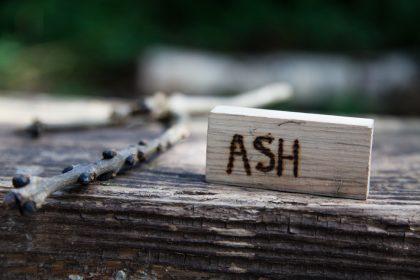 Ash block
