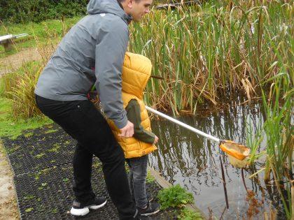 Pulborough Brooks Pond Dipping